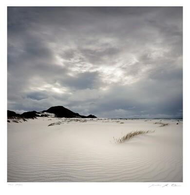Pale Sands | Limited Edition | Samantha Lee Osner