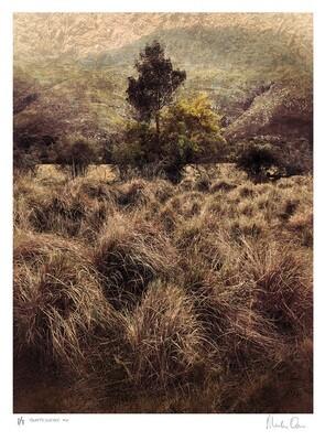 Quintessence No.6 | Ed 7 | Martin Osner