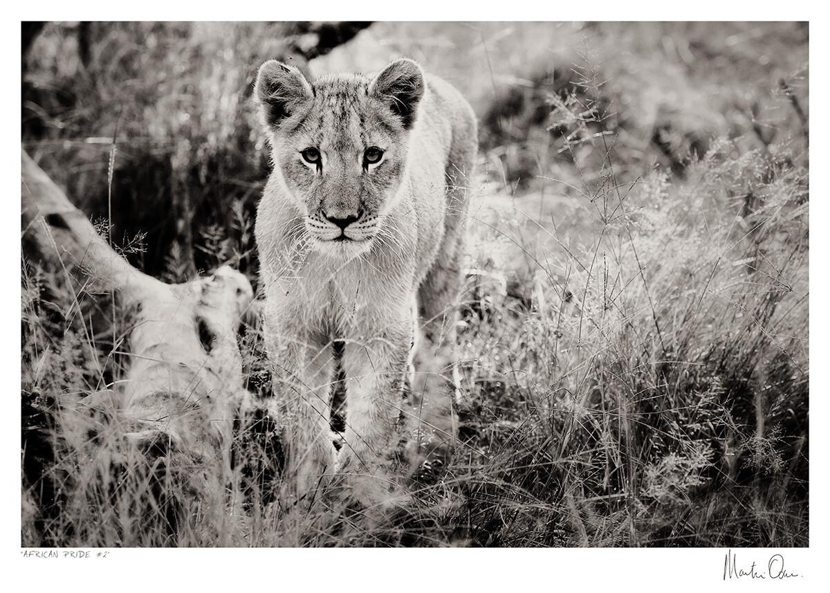 African Pride No.2 | Martin Osner