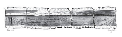 Panoramic Photomontage - Veld | Ed 30 | Sandy Mclea