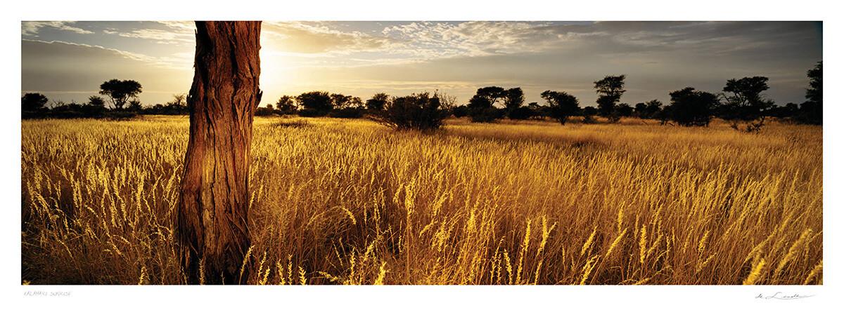 Kalahari Sunrise | Ed 25 | Koos van der Lende