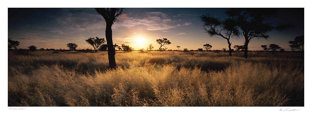 African Sunset | Ed 25 | Koos van der Lende