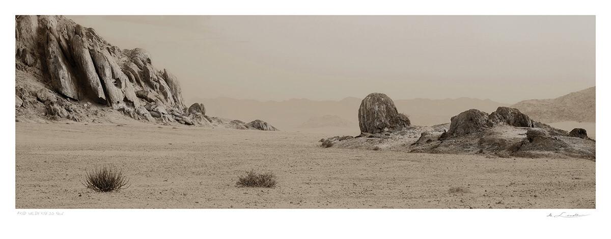 Arid Wilderness No.2 | Ed 25 | Koos van der Lende