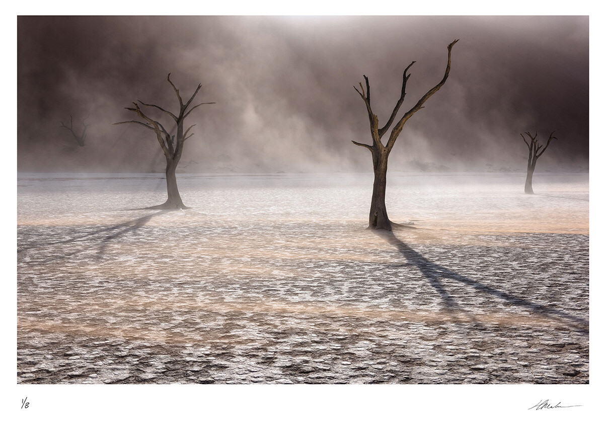 East Wind | Ed 8 | Hougaard Malan