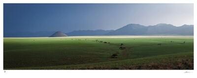 Namib Rand No.2 | Ed 8 | Hougaard Malan