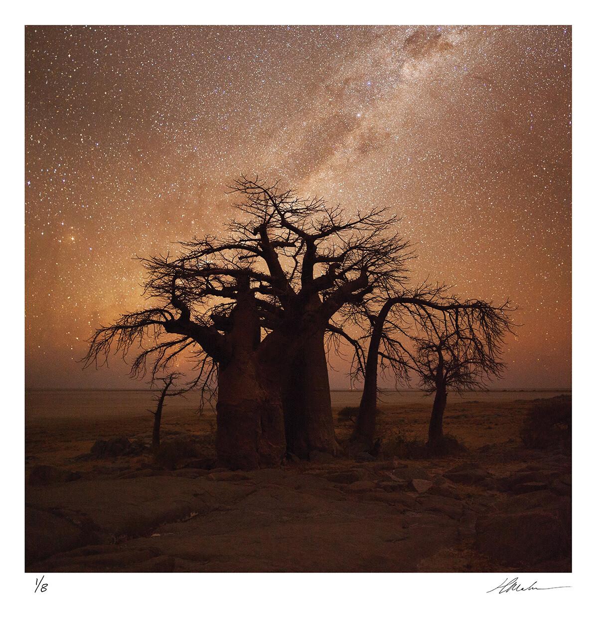 African Nights | Ed 8 | Hougaard Malan