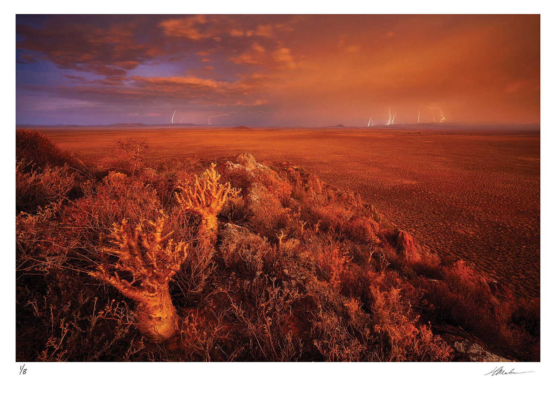 Karoo Storm | Ed 8 | Hougaard Malan
