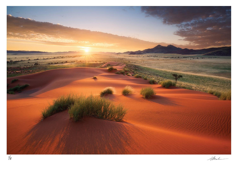 Namib Rand 2011 | Ed 8 | Hougaard Malan