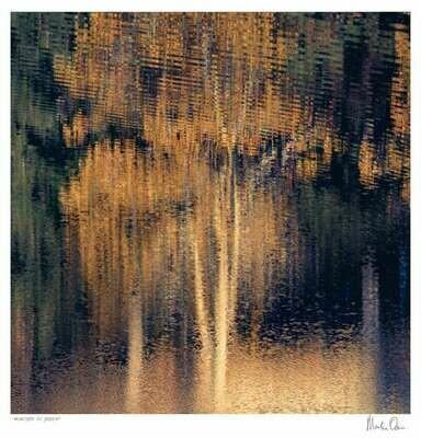 Reflection of Solitude | Martin Osner