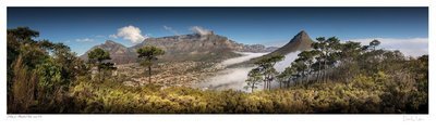 Classic Cape Town | Table Mountain Vista | Martin Osner