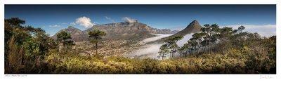 Classic Cape Town   Table Mountain Vista   Martin Osner