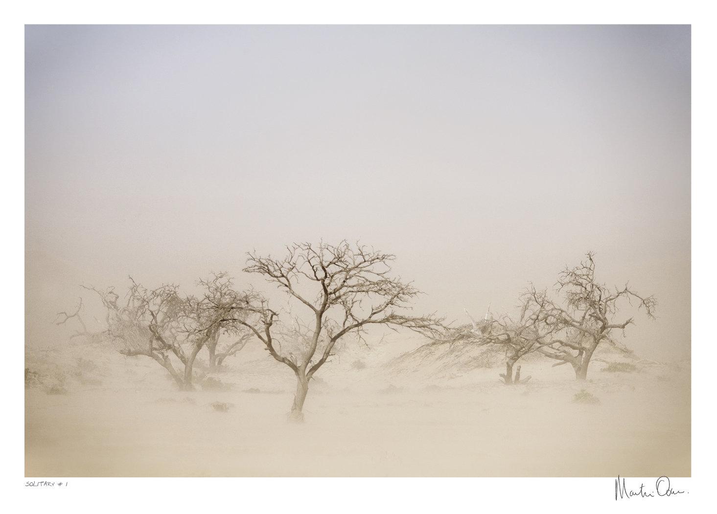 Solitary No.1 | Martin Osner