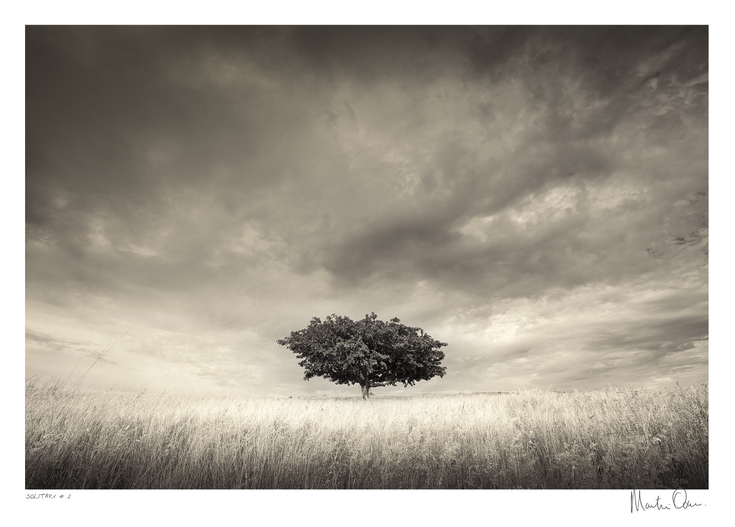 Solitary No.2 | Martin Osner