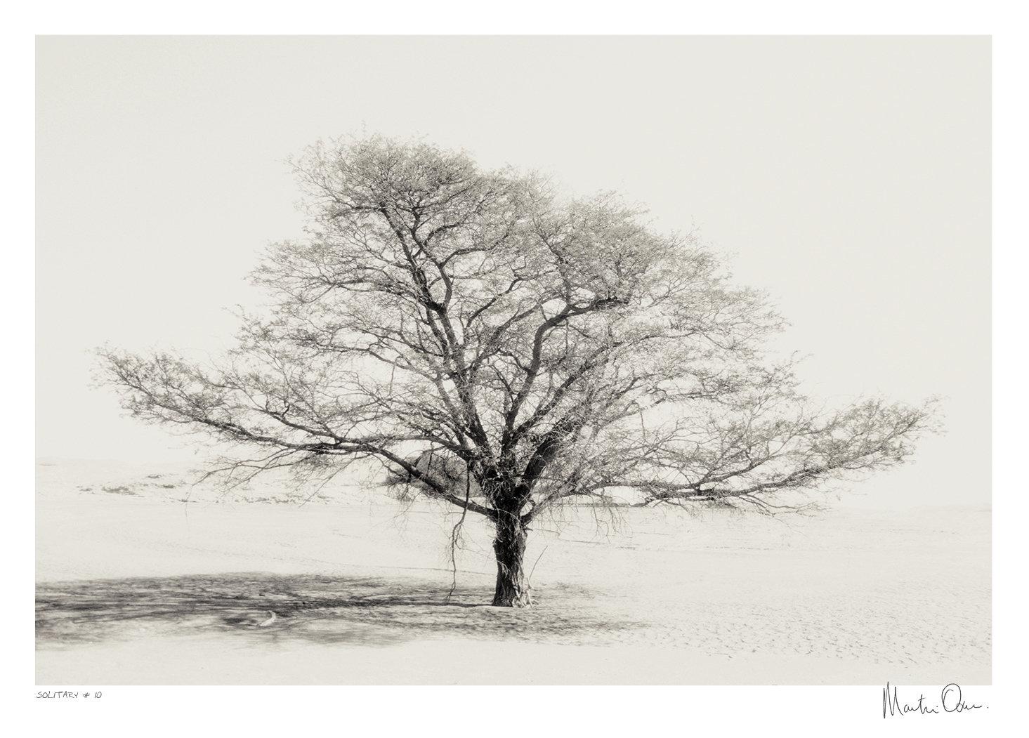 Solitary No.10 | Martin Osner