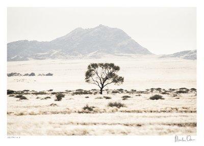 Solitary No.15 | Martin Osner