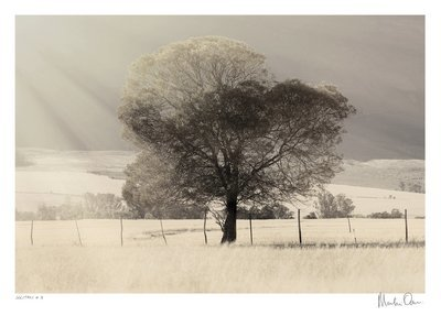 Solitary No.18 | Martin Osner
