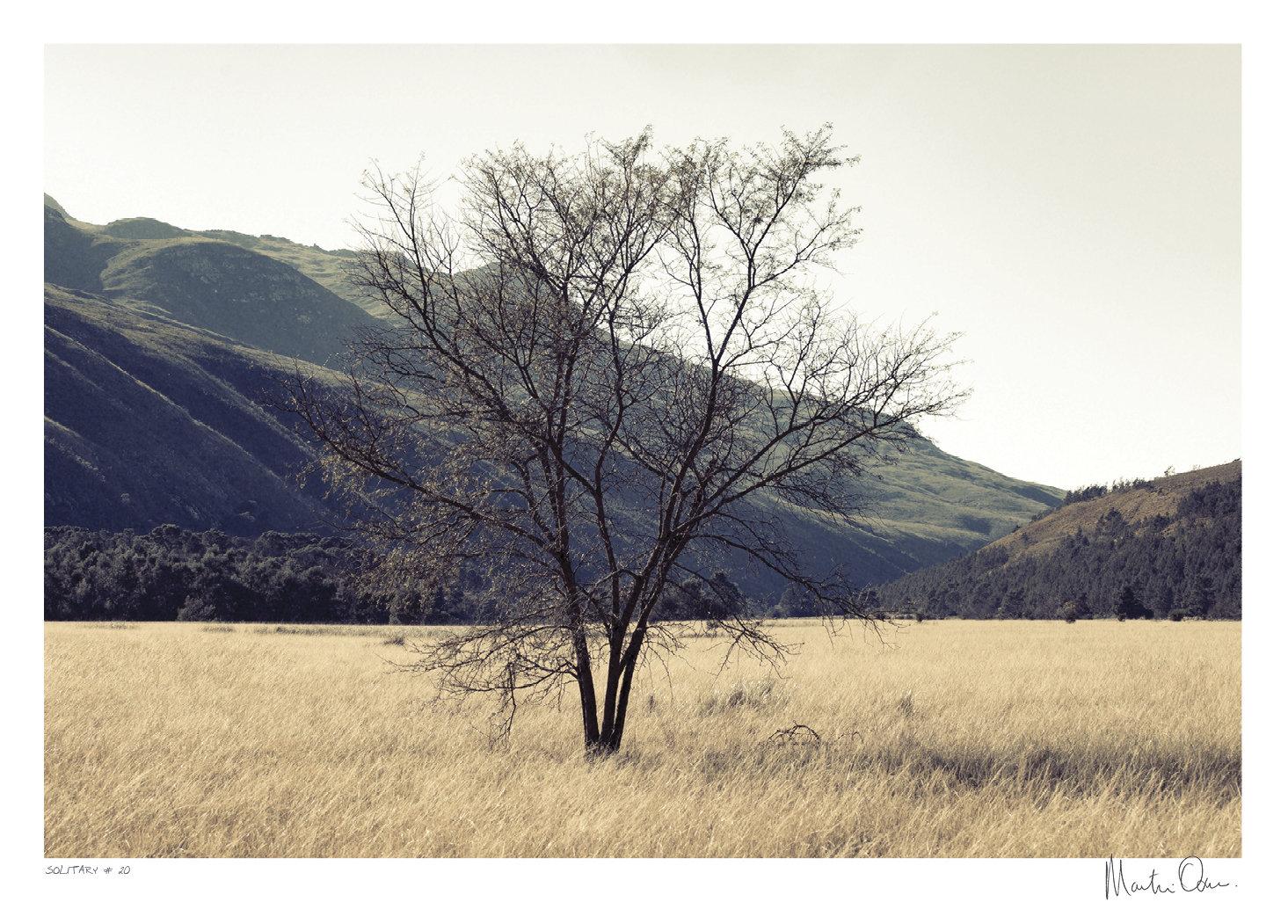 Solitary No.20 | Martin Osner