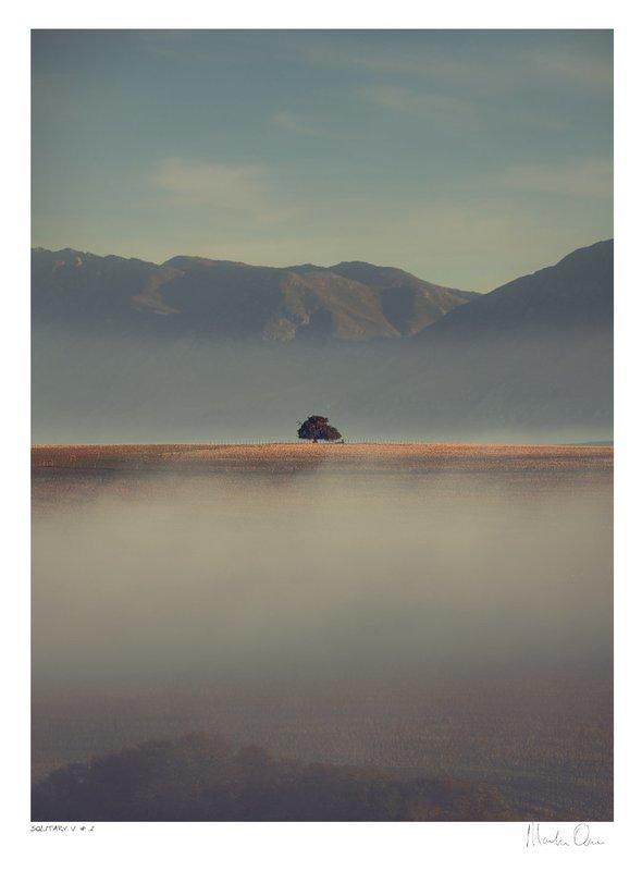 Solitary Vertical Collection No.1 | Martin Osner