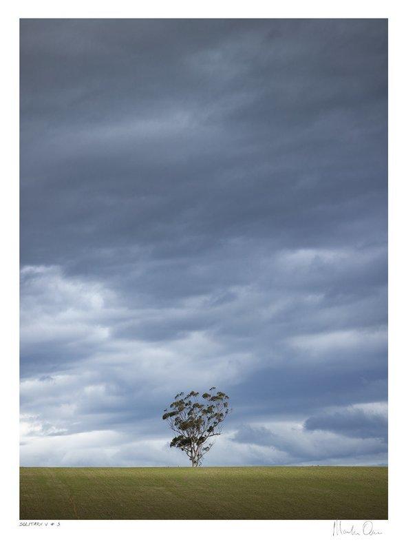 Solitary Vertical Collection No.3 | Martin Osner