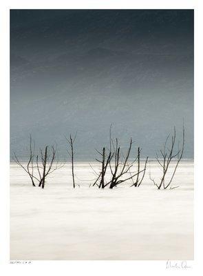 Solitary Vertical Collection No.4 | Martin Osner