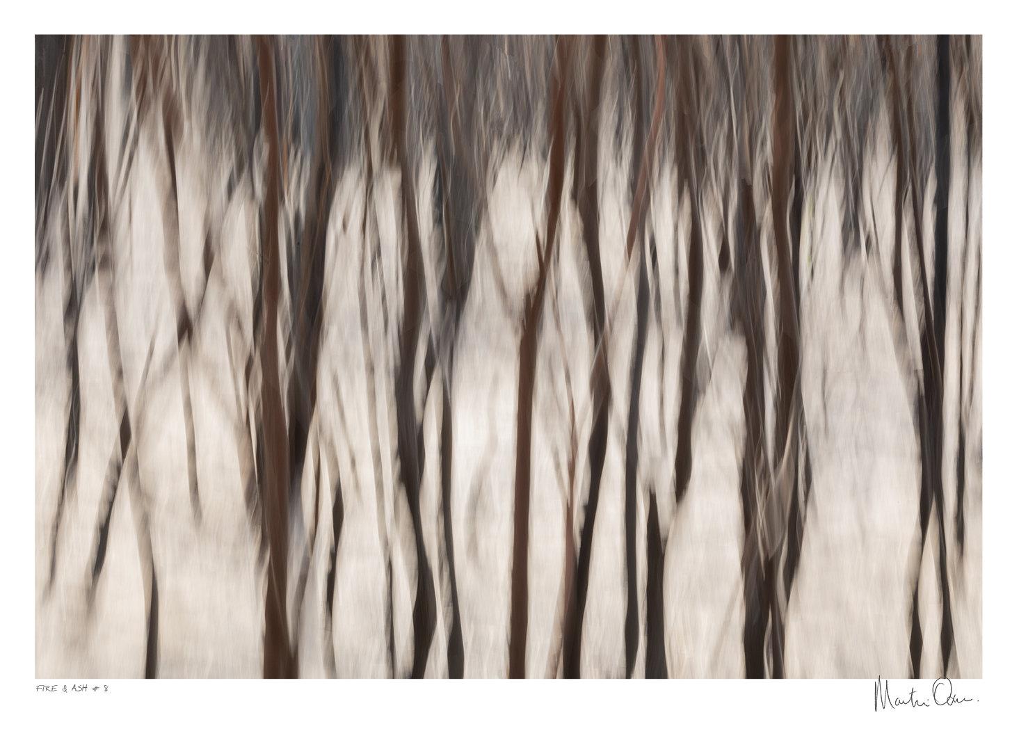 Fire and Ash No.8 | Martin Osner