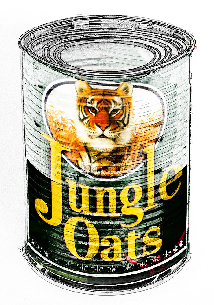 SA in a Can - Jungle Oats