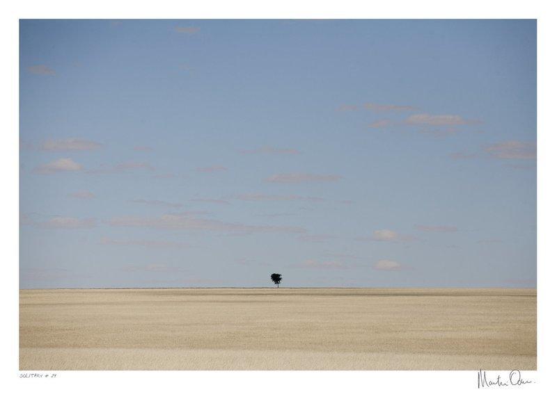 Solitary No.24 | Martin Osner