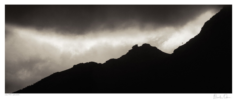 Classic Cape Town | Solitary Survivor | Martin Osner