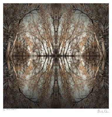 Mirror Island No.7   Edition 50   Martin Osner