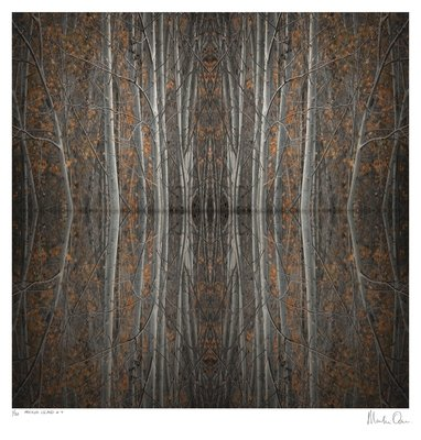 Mirror Island No.4   Edition 50   Martin Osner