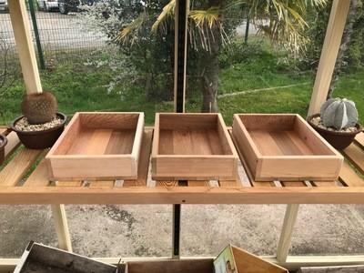 Seed Tray Triple Set