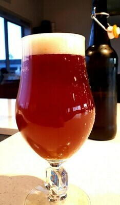 Mission to Mars - Red ale By The Brewstore