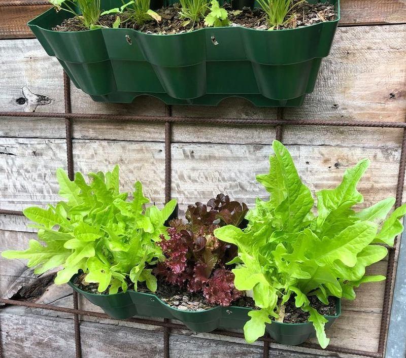 Vertical wall garden planter pot