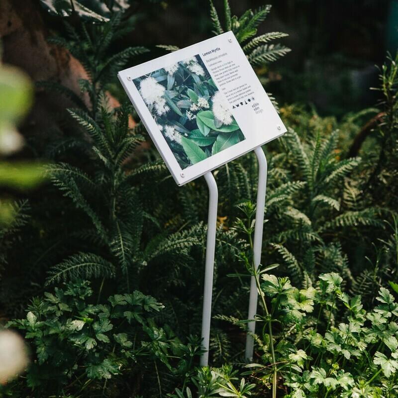 Bush Food Plant ID Signs - Metal