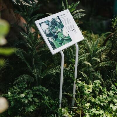 Interpretive Bush Tucker Plant ID Sign - Metal