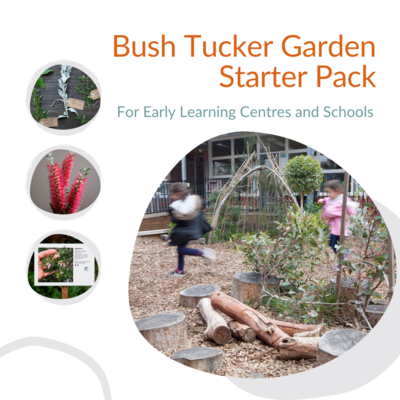 Bush Tucker Garden Starter Pack For Early Learning Centres and Schools