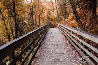 Autumn Bridge in Alaska
