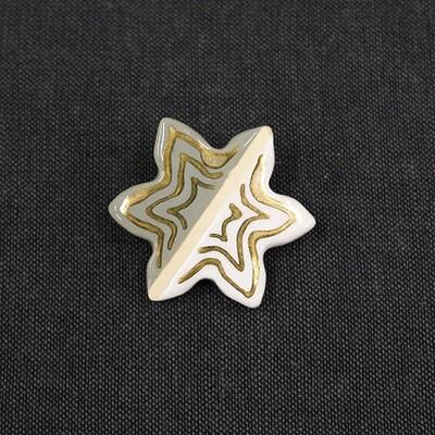 Talisman brooch - STAR