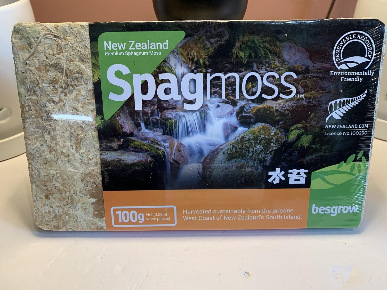 Sphagnum Moss Briquette (100 gram)