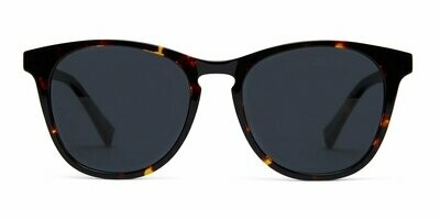 Nat Sunglasses​ Unisex- Maple Tortoise - Baxter Blue