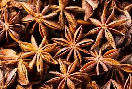 Anise, Pimpinella anisum