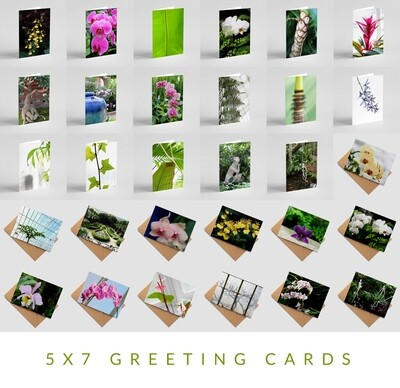 'Orchids et Aliae ' Greeting Card Series - Pack of 30