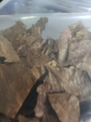 Crushed Indian almond leaves
