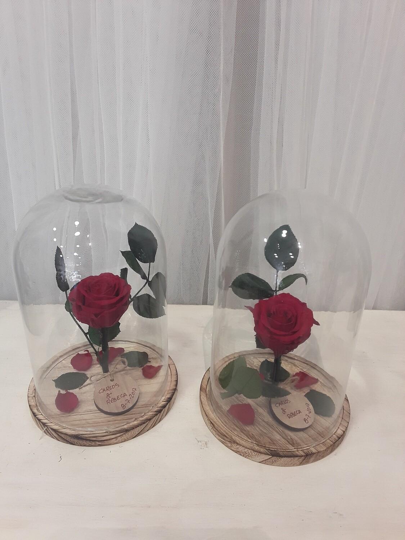 Cupula con rosa eterna