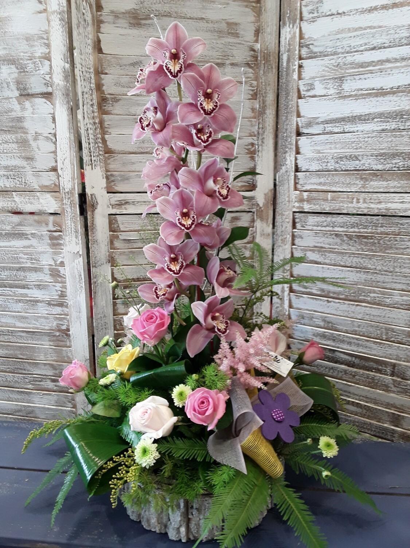 Centro orquídea
