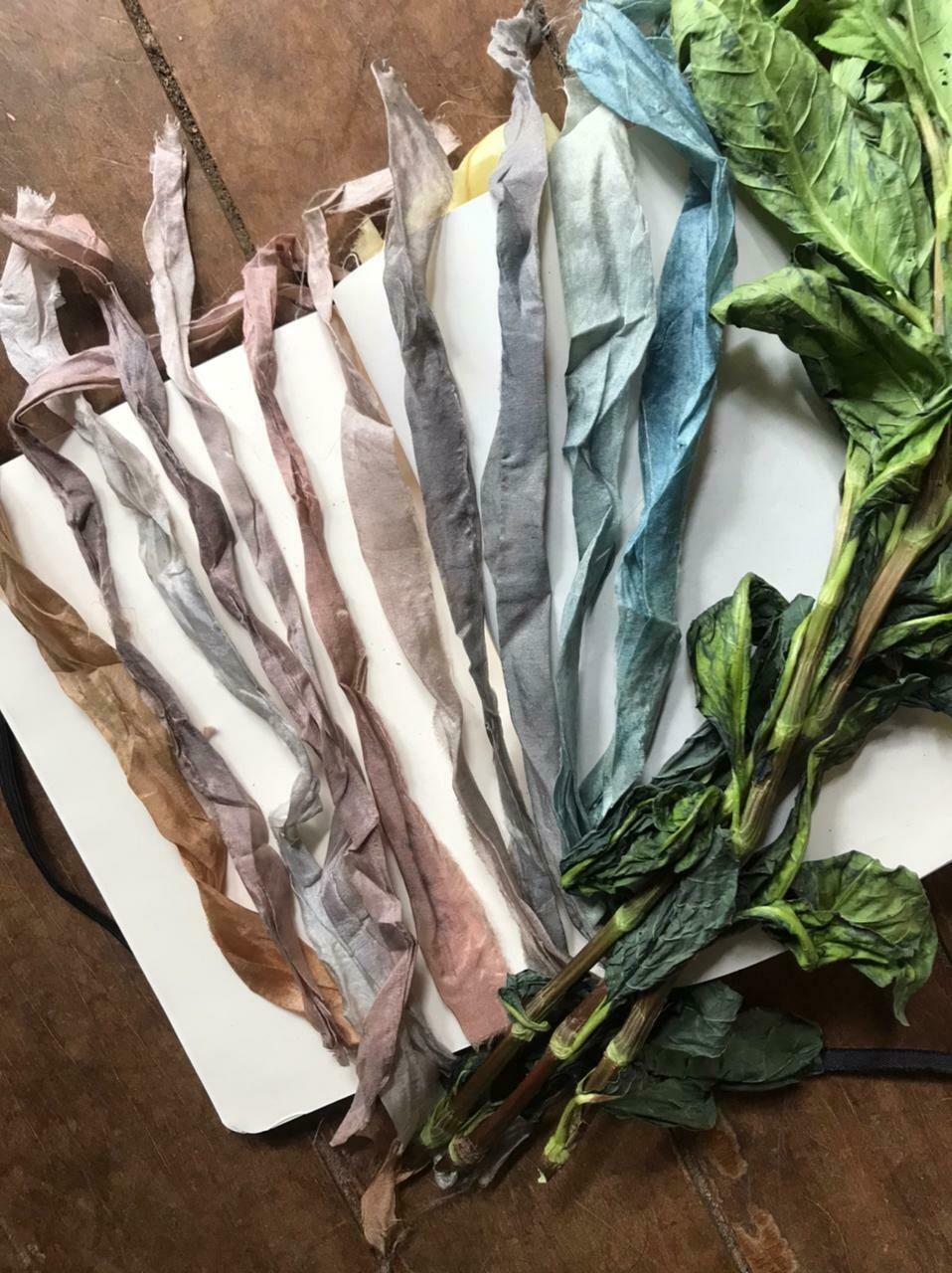 ON-LINE • Extração e tingimento de outras cores da planta índigo (Módulo 8) ~para este curso você precisa ter as suas próprias plantas índigo~