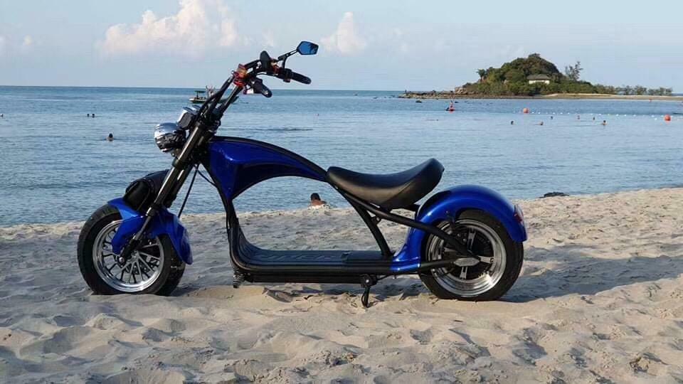 gebraucht E-Scooter Modell M1  mit COC blau