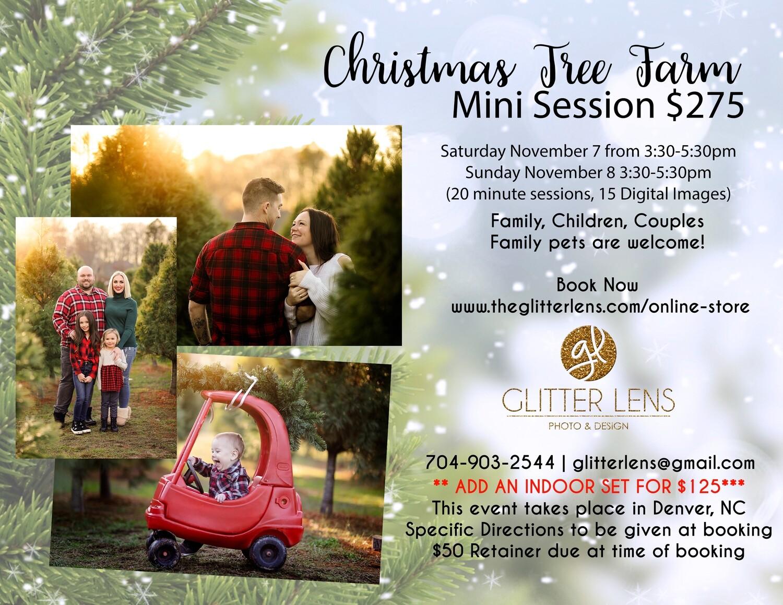Tree Farm Mini Sessions - November 7