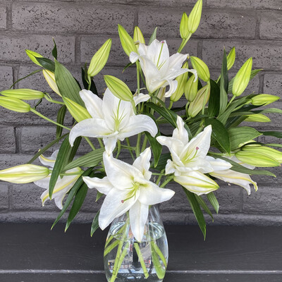 LOCAL LILIES (color choice)