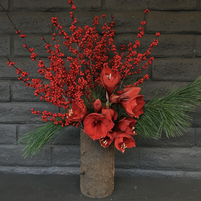 RED AMARYLLIS IN TIMBER VASE